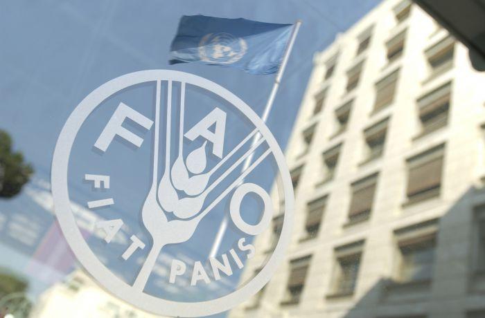 Албанская делегация прибыла в Турцию для участия в заседании ФАО