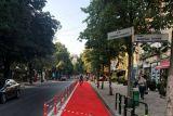 Столица Албании эффективно борется со смогом с помощью велосипедных дорожек